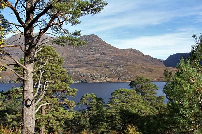 Loch Maree Islands Loch Maree And Slioch From
