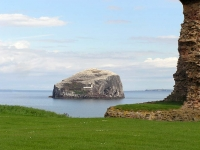 bass-rock-tantallon.jpg