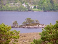 islet-loch-maree.jpg