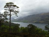 loch-maree-in-the-rain.jpg