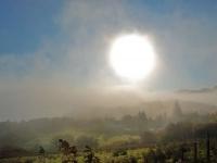 misty-morning-poolewe.jpg