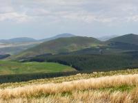 scotland-border-carter-bar-viewpoint.jpg