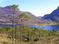view-from-beinn-eighe-mountain-trail.jpg