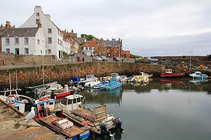 Crail Harbour and Cottages