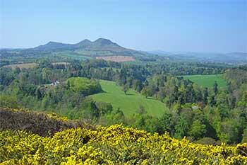Scotts View