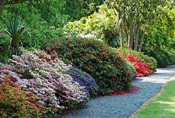 achamore-gardens-gigha